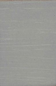 ant-grey